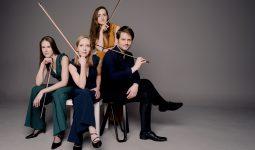 Dudok Quartet en Viride Kwartet LIVE