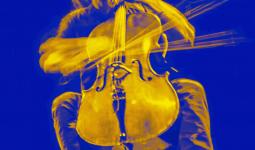 Livestreams Cello Biennale